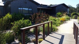 Lasseter Family Winery Visit - SonomaWineCat